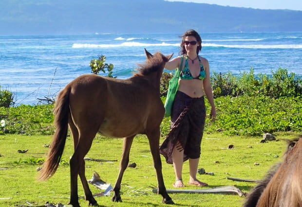 Walking amongst horses along the beach is a simple but beautiful experience.
